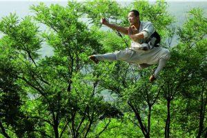shaolin Kung Fu © Sabine Kress